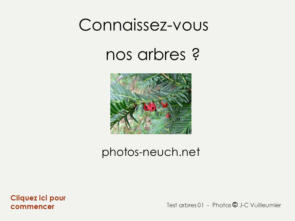 Connaissez-vous nos arbres ? Cliquez ici pour commencer Test arbres 01 - Photos © J-C Vuilleumier photos-neuch.net