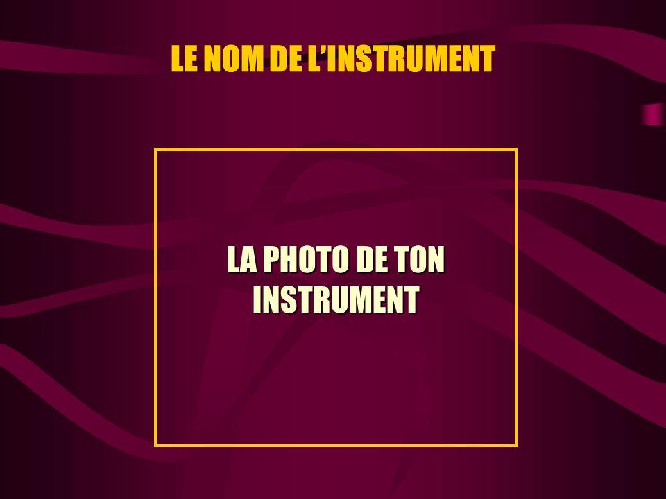 LE NOM DE LINSTRUMENT LA PHOTO DE TON INSTRUMENT