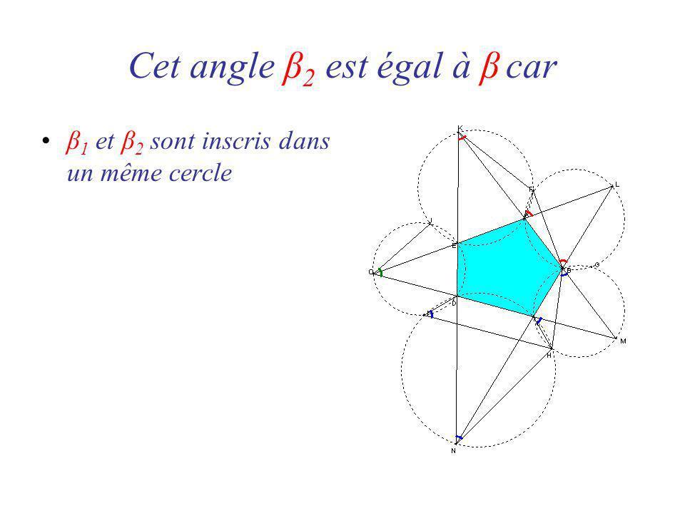 β 1 et β 2 sont inscris dans un même cercle