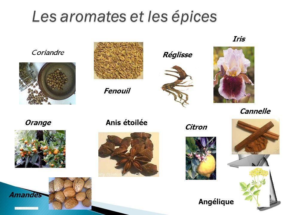 Coriandre Fenouil Réglisse Amandes Citron Anis étoiléeOrange Cannelle Iris Angélique