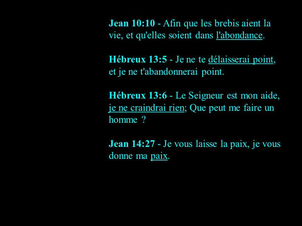 Jean 10:10 - Afin que les brebis aient la vie, et qu'elles soient dans l'abondance. Hébreux 13:5 - Je ne te délaisserai point, et je ne t'abandonnerai