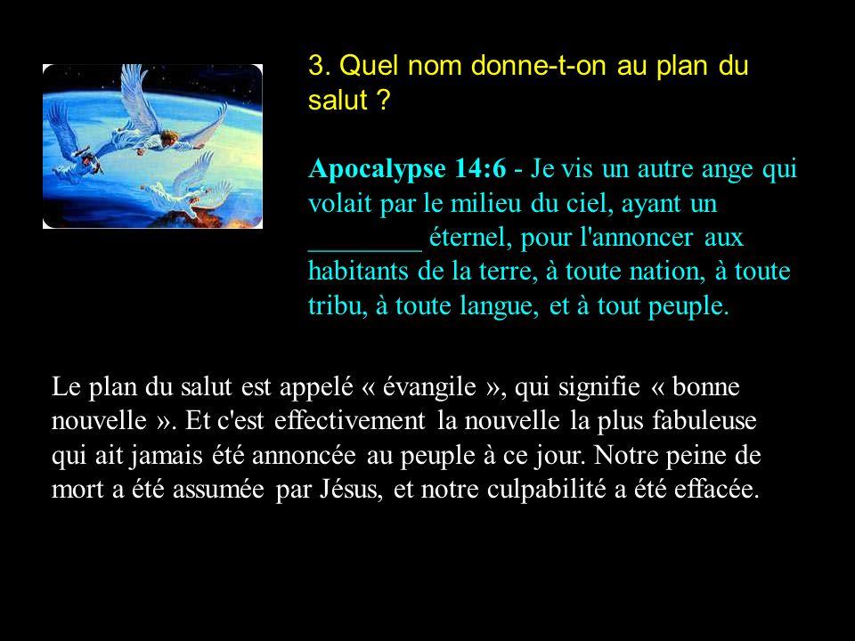 3. Quel nom donne-t-on au plan du salut ? Apocalypse 14:6 - Je vis un autre ange qui volait par le milieu du ciel, ayant un ________ éternel, pour l'a