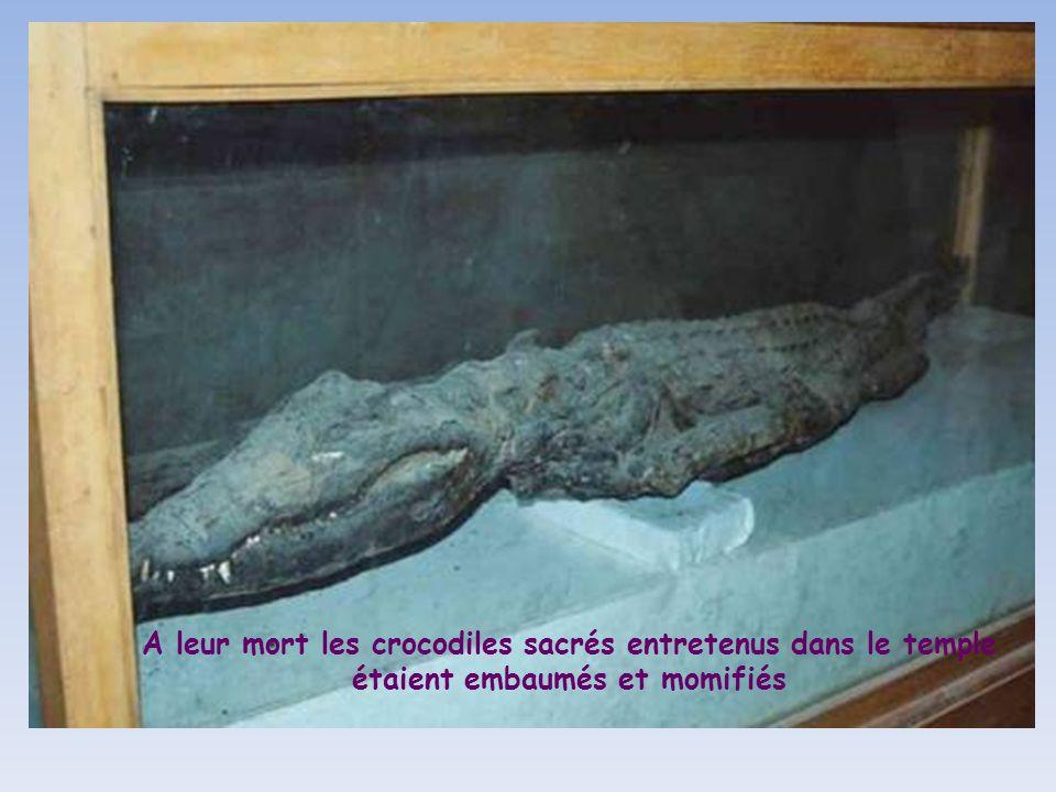 Sobek, le dieu de la fertilité à tête de crocodile