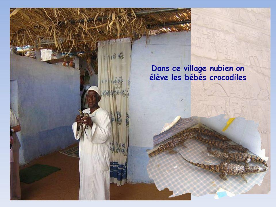 Les poupées des enfants dun village nubien