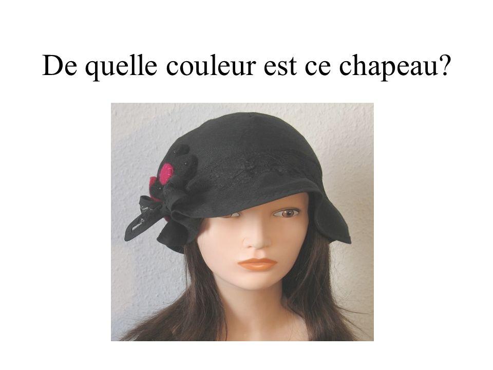 De quelle couleur est ce chapeau?