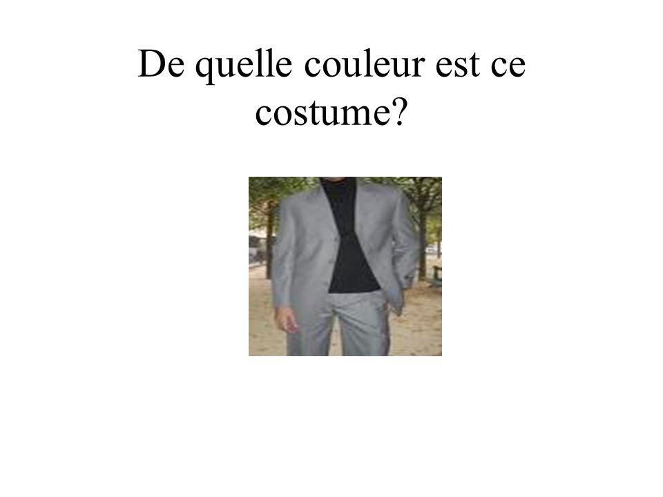De quelle couleur est ce costume?