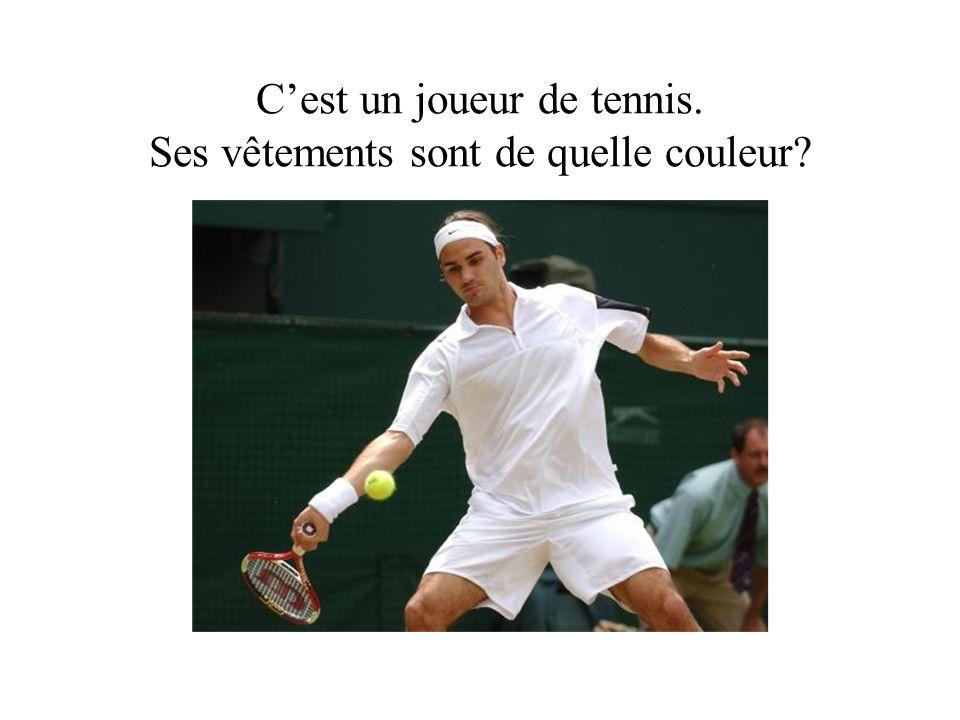 Cest un joueur de tennis. Ses vêtements sont de quelle couleur?