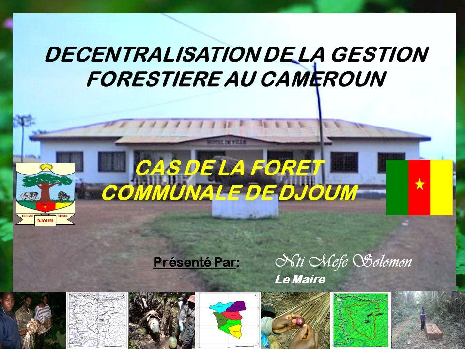 DECENTRALISATION DE LA GESTION FORESTIERE AU CAMEROUN Présenté Par: Nti Mefe Solomon Le Maire CAS DE LA FORET COMMUNALE DE DJOUM DJOUM COMMUNE COUNCIL