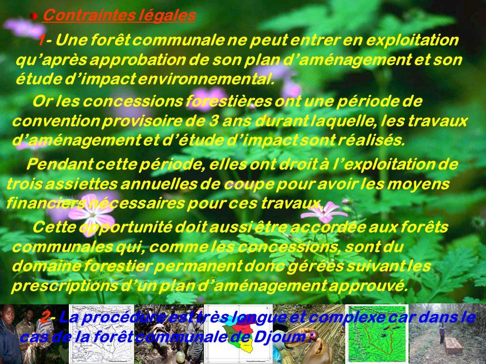 Contraintes légales 2- La procédure est très longue et complexe car dans le cas de la forêt communale de Djoum : 1- Une forêt communale ne peut entrer