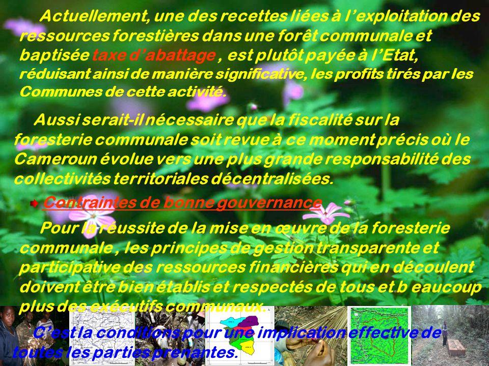 Pour la réussite de la mise en œuvre de la foresterie communale, les principes de gestion transparente et participative des ressources financières qui