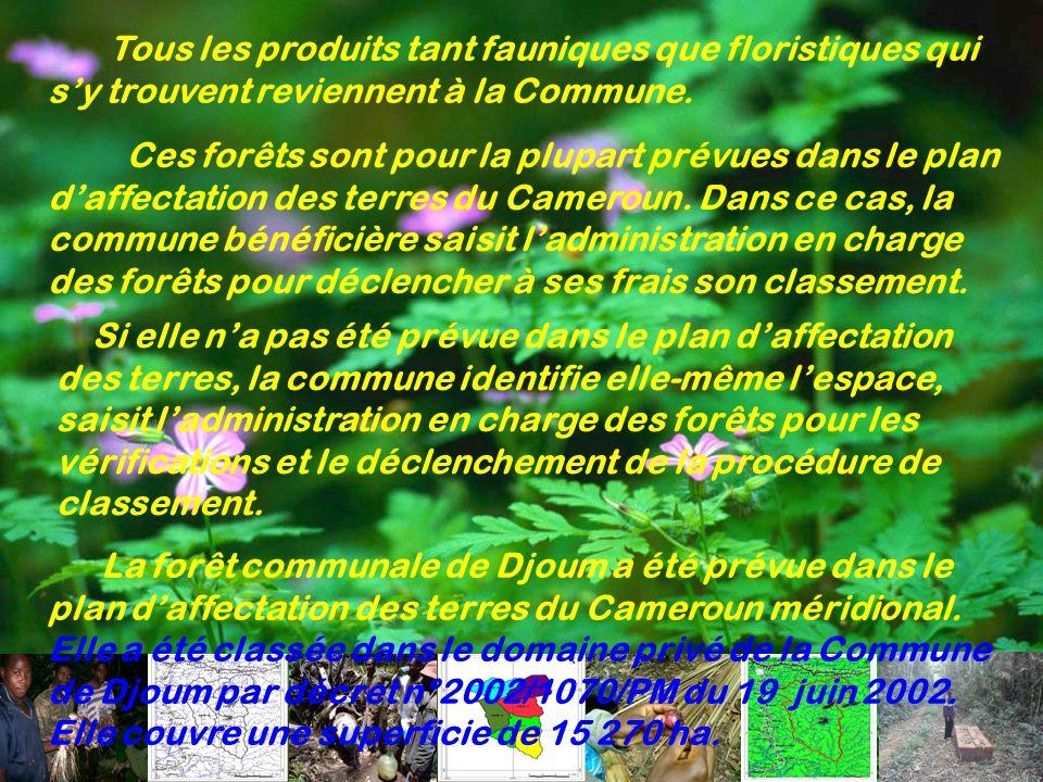 Tous les produits tant fauniques que floristiques qui sy trouvent reviennent à la Commune. Ces forêts sont pour la plupart prévues dans le plan daffec
