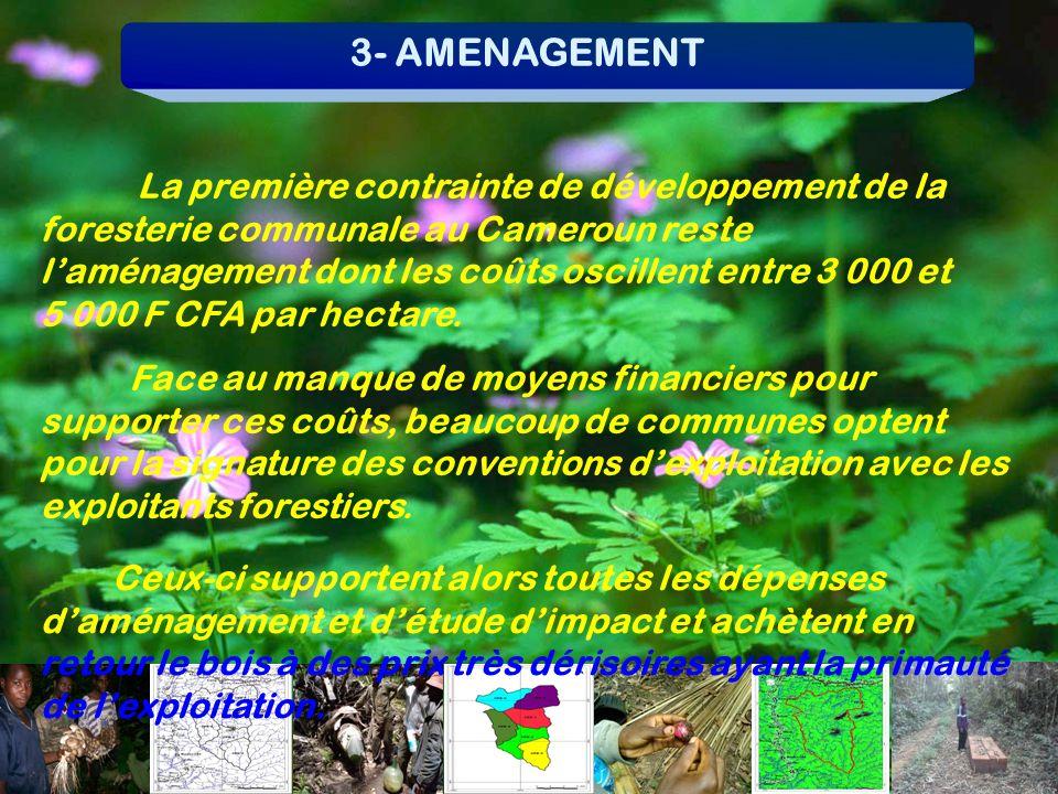 3- AMENAGEMENT La première contrainte de développement de la foresterie communale au Cameroun reste laménagement dont les coûts oscillent entre 3 000