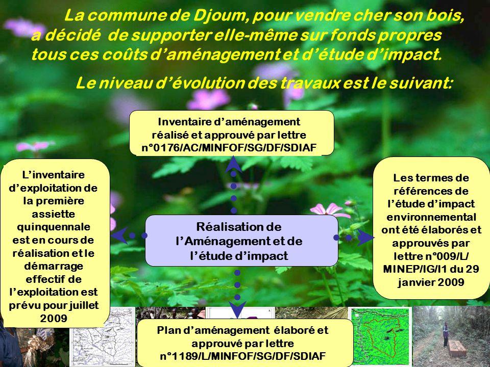 La commune de Djoum, pour vendre cher son bois, a décidé de supporter elle-même sur fonds propres tous ces coûts daménagement et détude dimpact. Réali