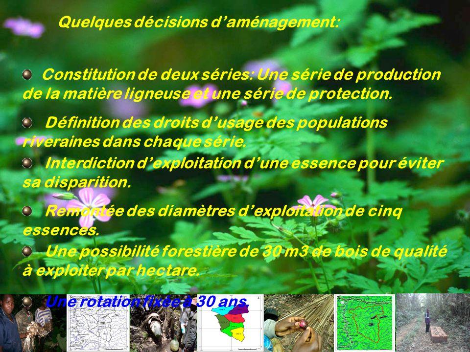 Quelques décisions daménagement: Constitution de deux séries: Une série de production de la matière ligneuse et une série de protection. Définition de