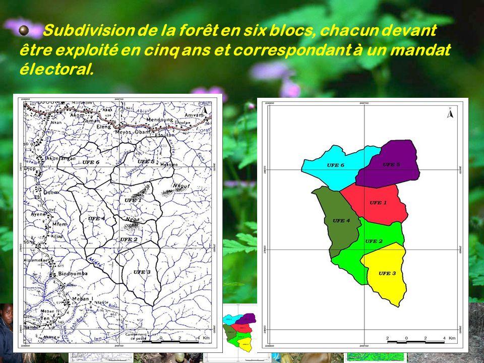 Subdivision de la forêt en six blocs, chacun devant être exploité en cinq ans et correspondant à un mandat électoral.