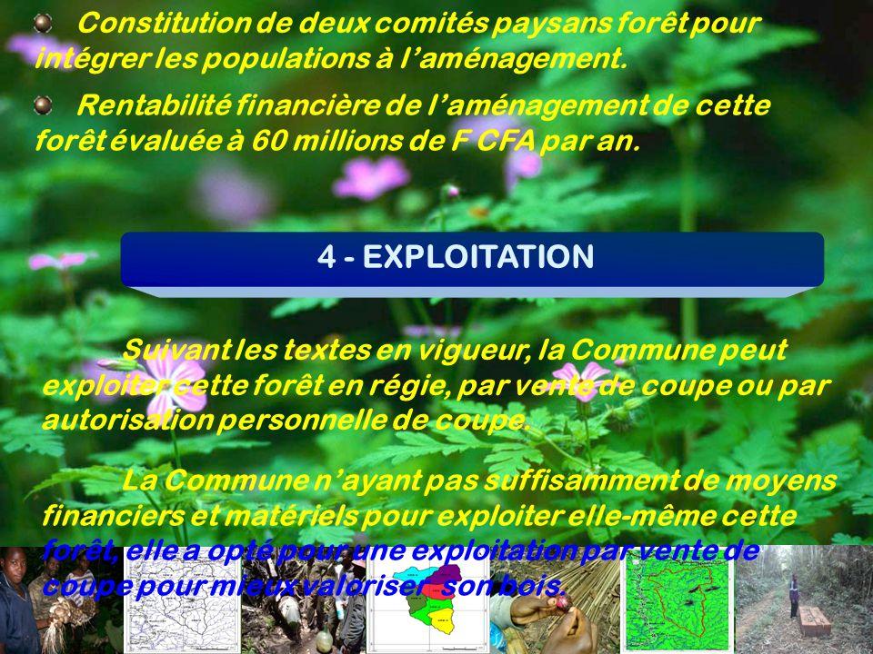 Constitution de deux comités paysans forêt pour intégrer les populations à laménagement. Rentabilité financière de laménagement de cette forêt évaluée