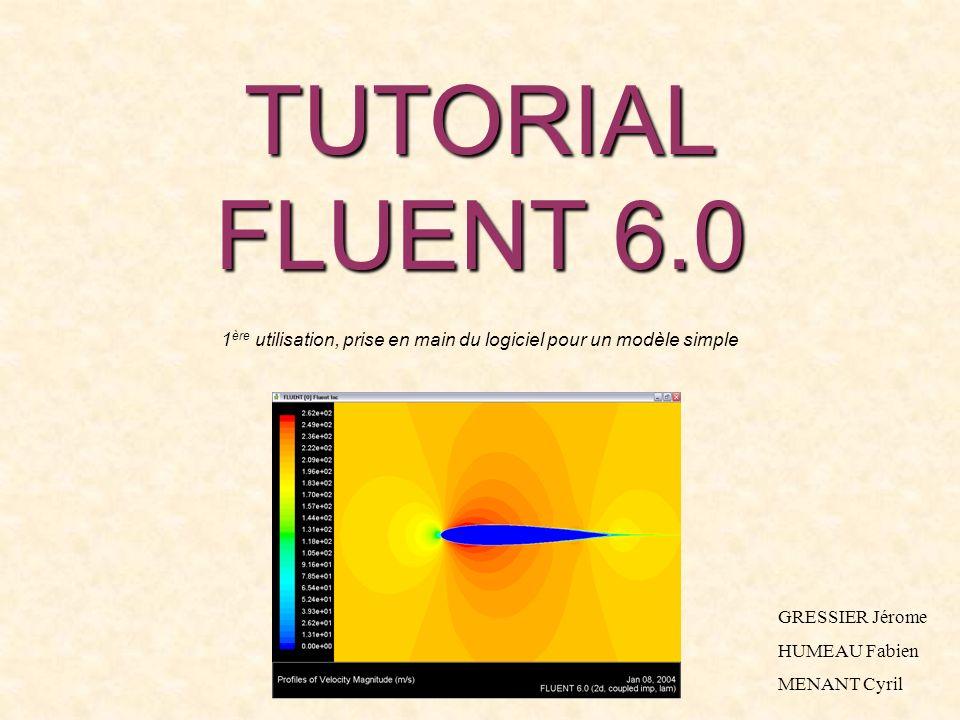 TUTORIAL FLUENT 6.0 1 ère utilisation, prise en main du logiciel pour un modèle simple GRESSIER Jérome HUMEAU Fabien MENANT Cyril