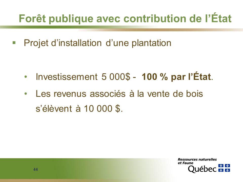 44 Forêt publique avec contribution de lÉtat Projet dinstallation dune plantation Investissement 5 000$ - 100 % par lÉtat. Les revenus associés à la v