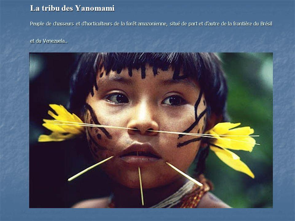 La tribu des Yanomami Peuple de chasseurs et dhorticulteurs de la forêt amazonienne, situé de part et dautre de la frontière du Brésil et du Venezuela