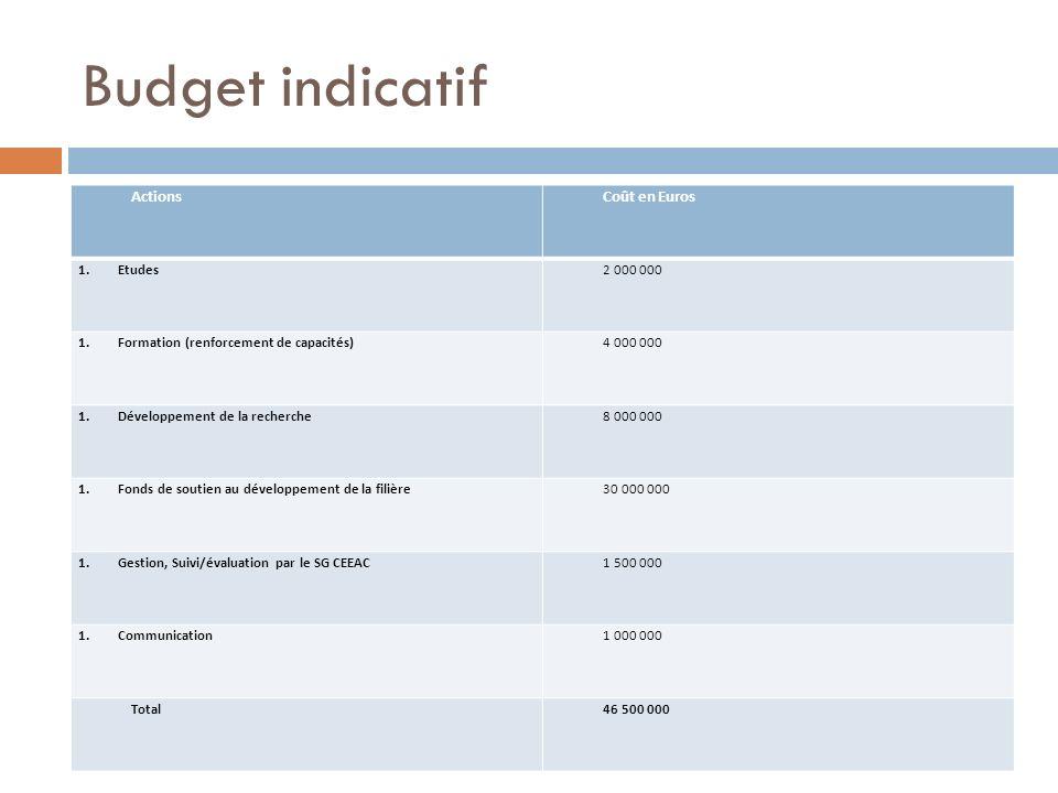 Budget indicatif ActionsCoût en Euros 1.Etudes2 000 000 1.Formation (renforcement de capacités) 4 000 000 1.Développement de la recherche 8 000 000 1.