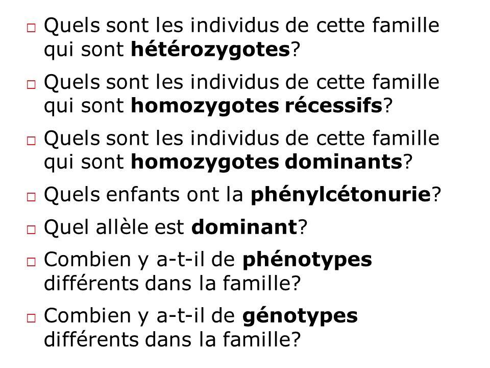 Quels sont les individus de cette famille qui sont hétérozygotes? Quels sont les individus de cette famille qui sont homozygotes récessifs? Quels sont