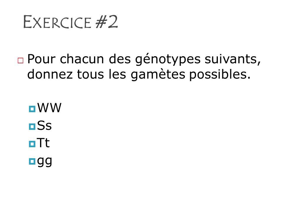 E XERCICE #2 Pour chacun des génotypes suivants, donnez tous les gamètes possibles. WW Ss Tt gg