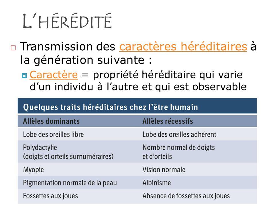 L HÉRÉDITÉ Transmission des caractères héréditaires à la génération suivante : Caractère = propriété héréditaire qui varie dun individu à lautre et qu