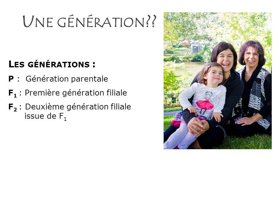 U NE GÉNÉRATION ?? L ES GÉNÉRATIONS : P : Génération parentale F 1 : Première génération filiale F 2 : Deuxième génération filiale issue de F 1