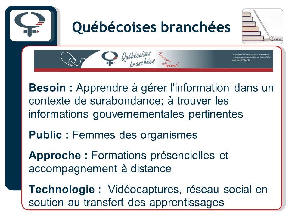 Québécoises branchées Besoin : Apprendre à gérer l'information dans un contexte de surabondance; à trouver les informations gouvernementales pertinent