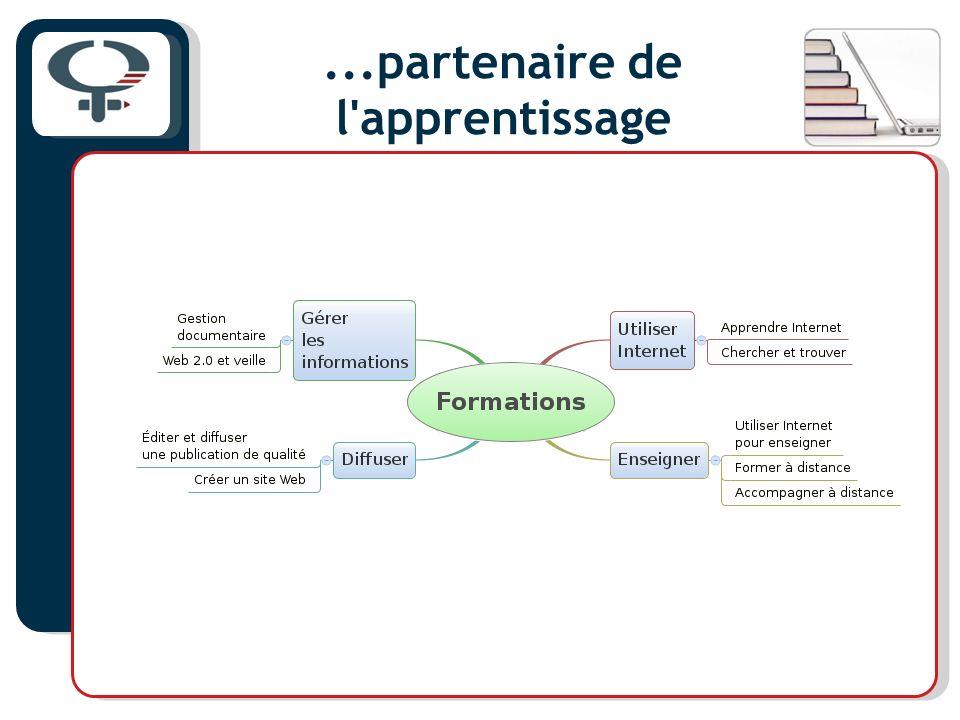 La formation à distance Le partenariat Fadafem Partenaires : Regroupements provinciaux, acteurs de l ATLV (Aféas, CDÉACF, CIAFT, RMFVVC, Relais-femmes) L UQÀM