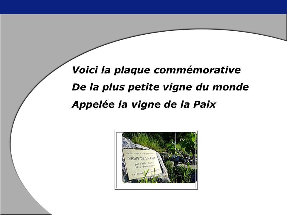 Place Farinet Cest une place d'accueil et de réception au pied du village de Saillon. Lieu de départ vers la colline Ardente et la petite vigne de la