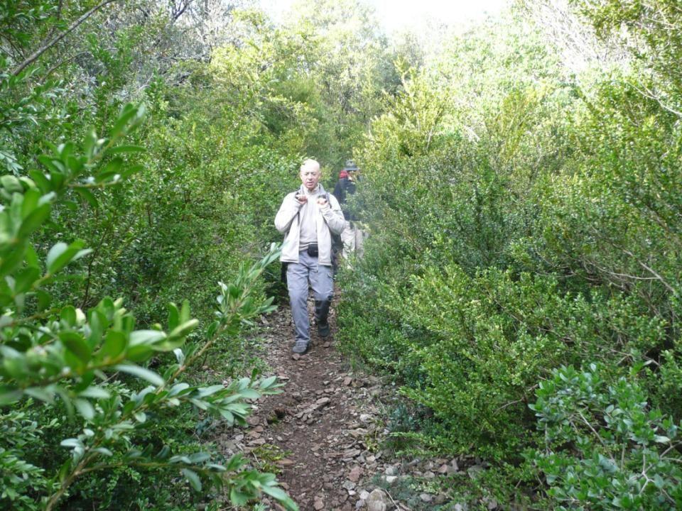 Ce petit sentier étroit, caillouteux, traverse, pendant près de 6km, châtaigners, chênes, buis, quel charme.
