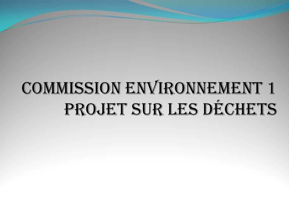 1 - Tenter de réduire la pollution locale par les détritus.