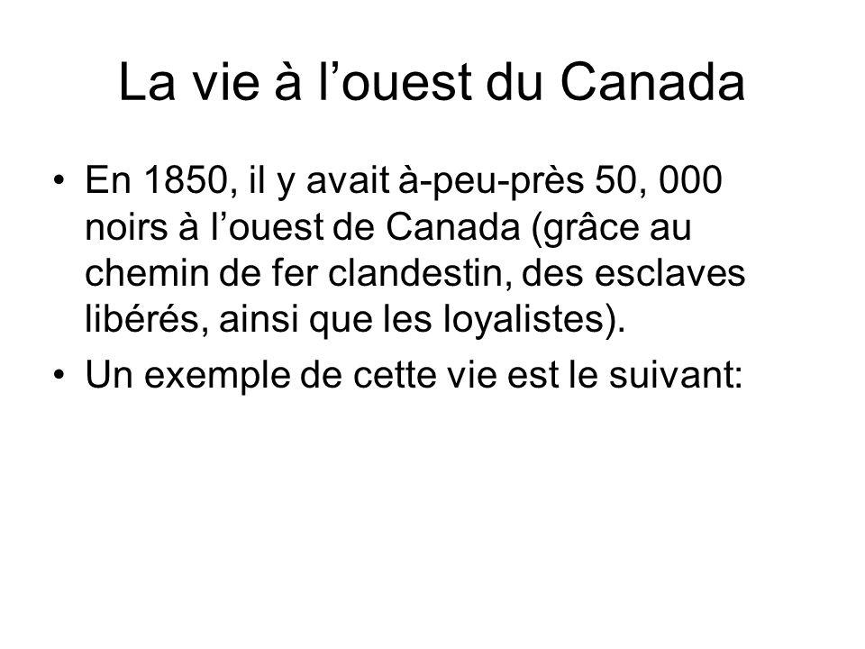 La vie à louest du Canada En 1850, il y avait à-peu-près 50, 000 noirs à louest de Canada (grâce au chemin de fer clandestin, des esclaves libérés, ai