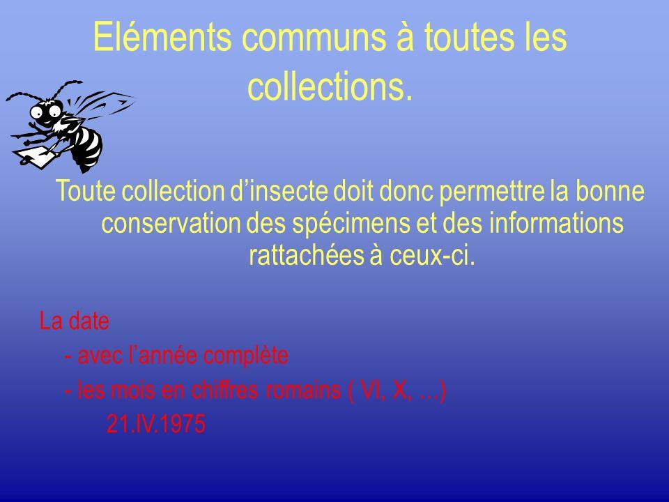 Eléments communs à toutes les collections. Toute collection dinsecte doit donc permettre la bonne conservation des spécimens et des informations ratta