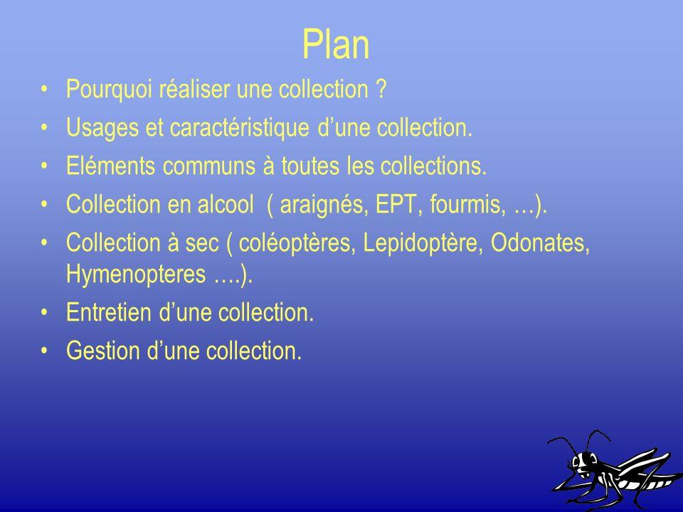 Plan Pourquoi réaliser une collection ? Usages et caractéristique dune collection. Eléments communs à toutes les collections. Collection en alcool ( a