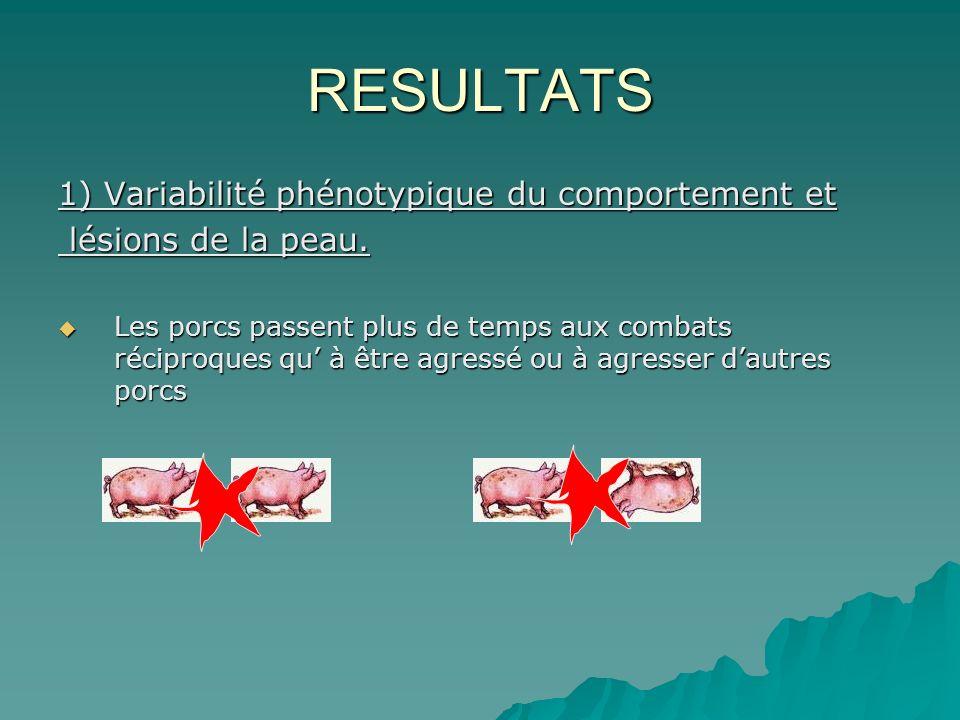 RESULTATS 1) Variabilité phénotypique du comportement et lésions de la peau.