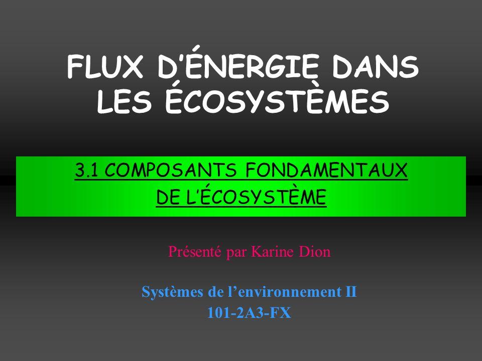 FLUX DÉNERGIE DANS LES ÉCOSYSTÈMES Systèmes de lenvironnement II 101-2A3-FX Présenté par Karine Dion 3.1 COMPOSANTS FONDAMENTAUX DE LÉCOSYSTÈME
