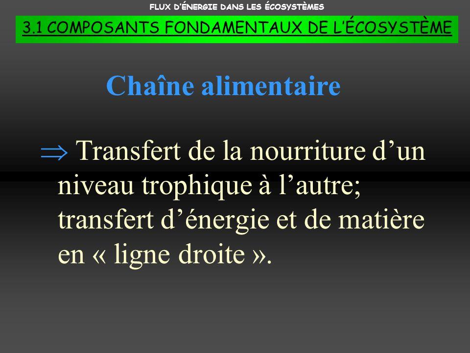 FLUX DÉNERGIE DANS LES ÉCOSYSTÈMES 3.1 COMPOSANTS FONDAMENTAUX DE LÉCOSYSTÈME Transfert de la nourriture dun niveau trophique à lautre; transfert déne