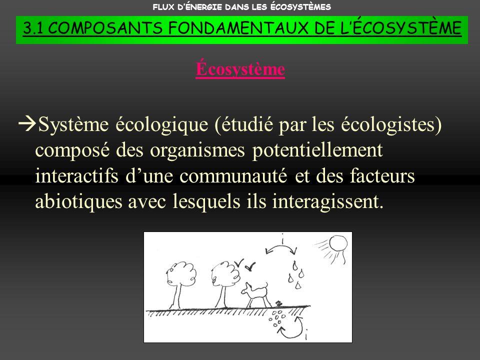 FLUX DÉNERGIE DANS LES ÉCOSYSTÈMES 3.1 COMPOSANTS FONDAMENTAUX DE LÉCOSYSTÈME Létape organique dun écosystème Létape organique est donc le moteur qui actionne la circulation de la matière et de lénergie dans les 4 réservoirs de lécosystème.