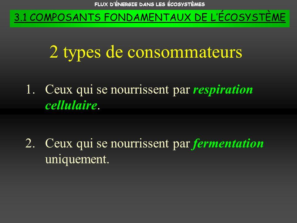 FLUX DÉNERGIE DANS LES ÉCOSYSTÈMES 3.1 COMPOSANTS FONDAMENTAUX DE LÉCOSYSTÈME 1.Ceux qui se nourrissent par respiration cellulaire. 2.Ceux qui se nour