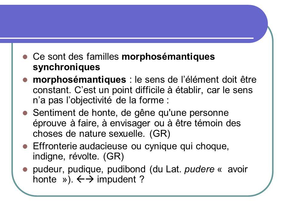 Ce sont des familles morphosémantiques synchroniques morphosémantiques : le sens de lélément doit être constant.