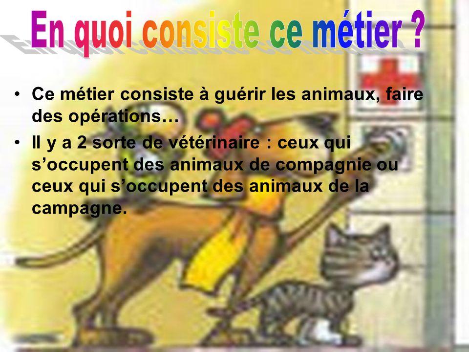 Quelles études faut-il faire ? Il existe 4 écoles nationales vétérinaires :une à Lyon (69), Maisons- Alfort (94), Nantes (44) et Toulouse (31). Elles