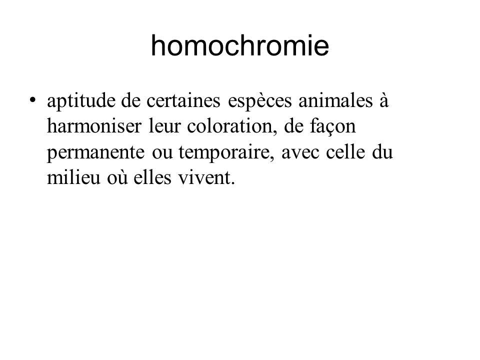 homochromie aptitude de certaines espèces animales à harmoniser leur coloration, de façon permanente ou temporaire, avec celle du milieu où elles vive