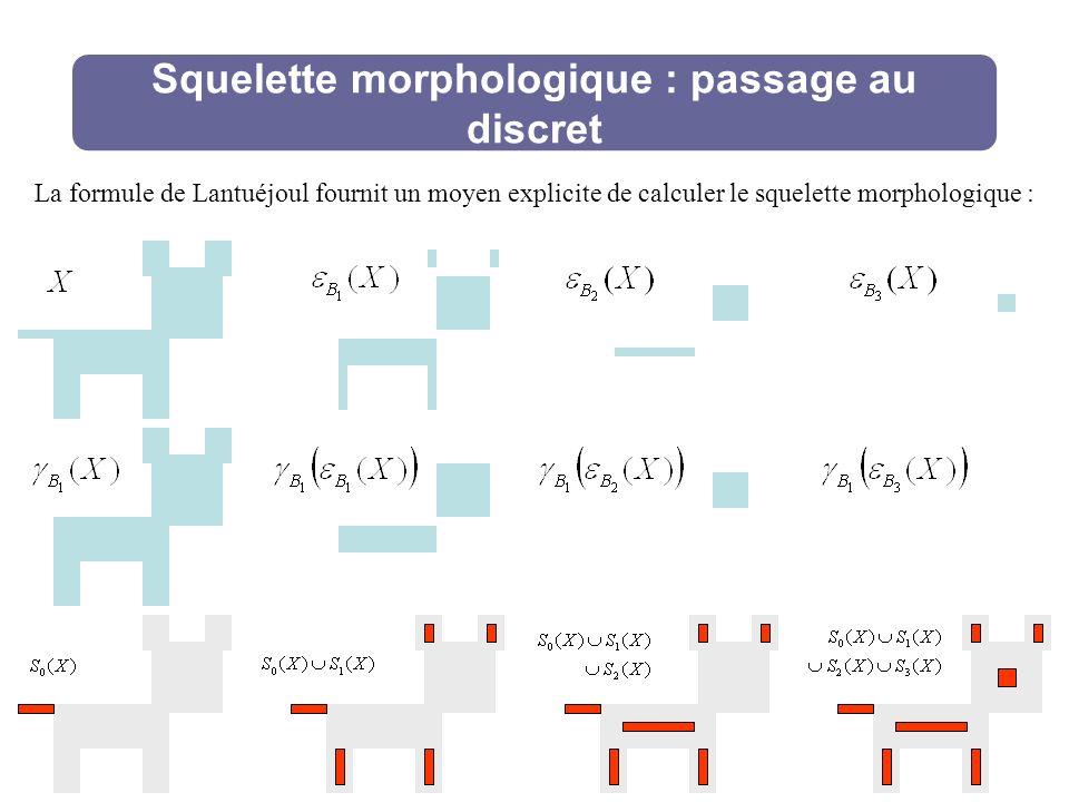 Squelette morphologique : passage au discret La formule de Lantuéjoul fournit un moyen explicite de calculer le squelette morphologique :