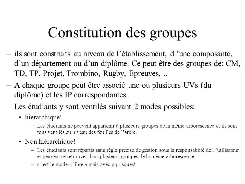 Constitution des groupes –ils sont construits au niveau de létablissement, d une composante, dun département ou dun diplôme.