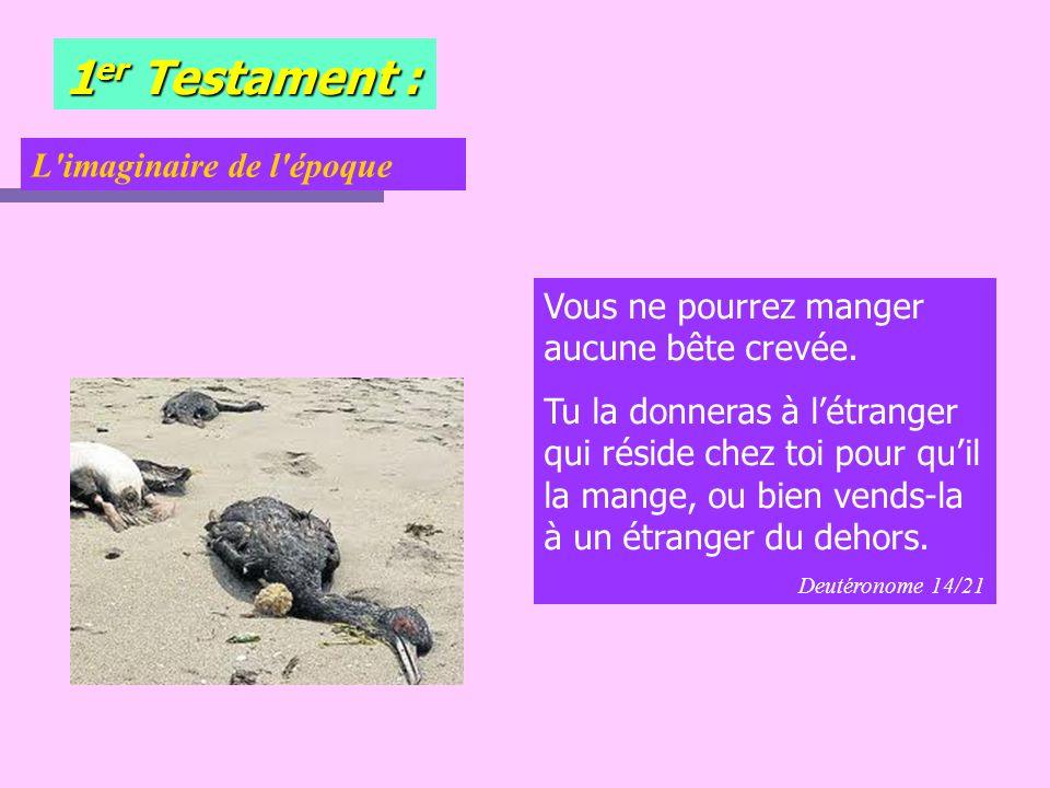 1 er Testament : 1.La rupture apport é e par la Loi ou les Proph è tes Prov.