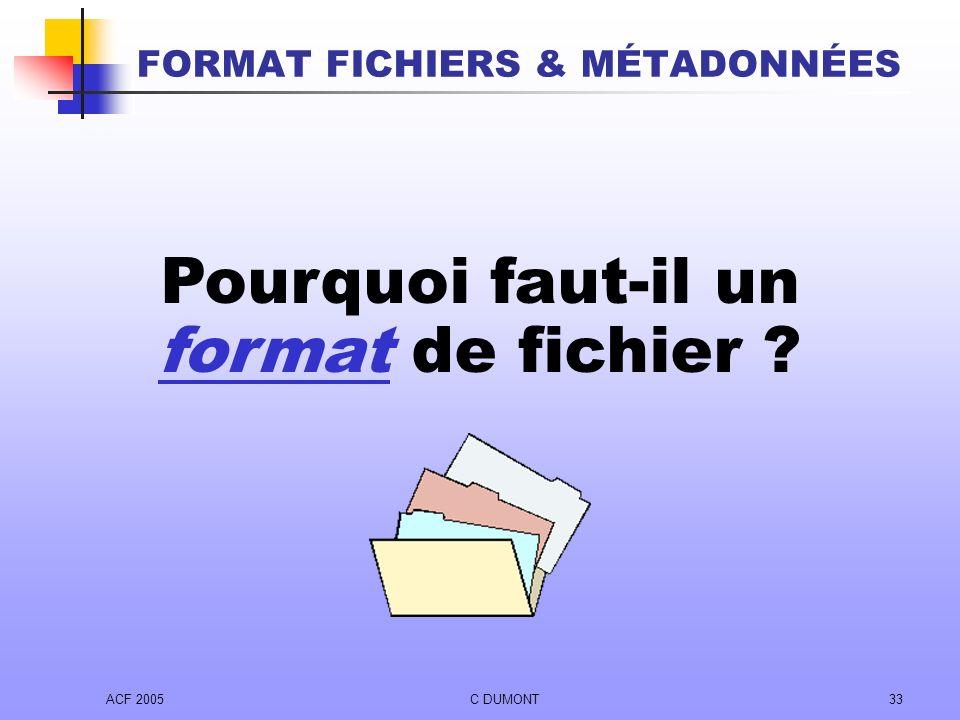 ACF 2005C DUMONT33 FORMAT FICHIERS & MÉTADONNÉES Pourquoi faut-il un format de fichier ?