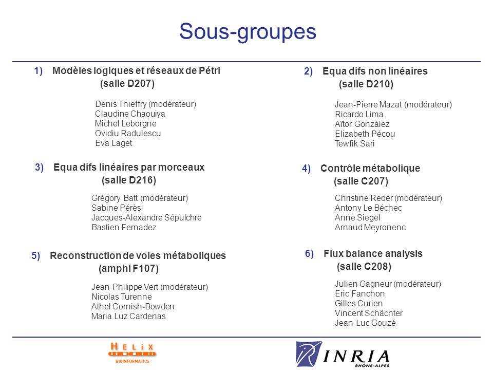 Sous-groupes 1)Modèles logiques et réseaux de Pétri (salle D207) 2)Equa difs non linéaires (salle D210) 3)Equa difs linéaires par morceaux (salle D216