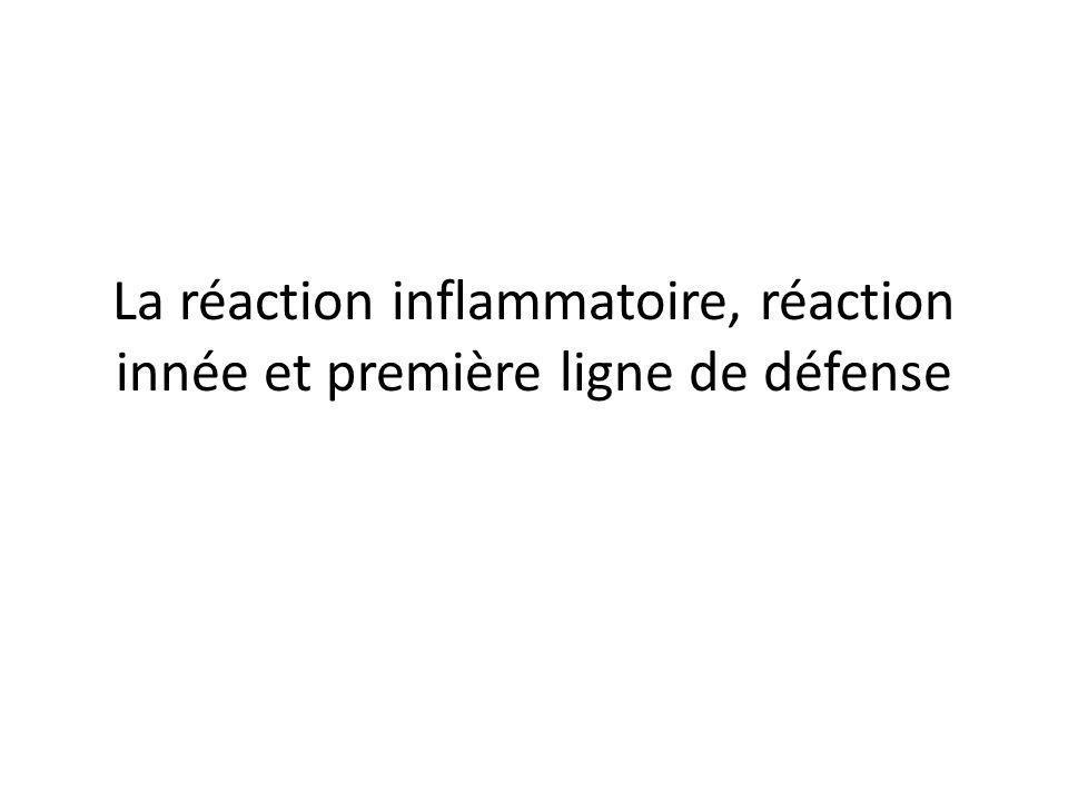 La réaction inflammatoire, réaction innée et première ligne de défense